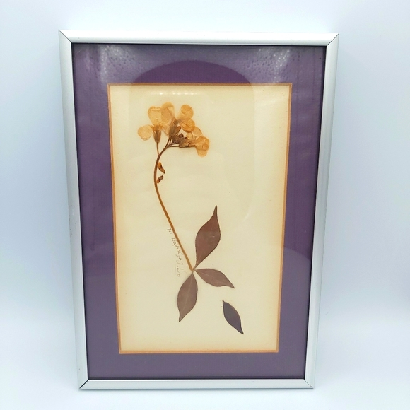 Hand Made Pressed Violet Flower Framed Art Photo
